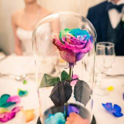 beauty and the beast rose glass jar centre piece at Marybrooke Manor reception table