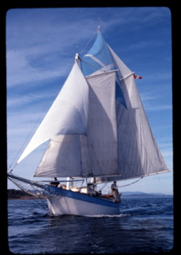 Picture of the Peregrine, Ean's hand built Ferro-cement hull schooner