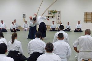 Berthiaume sensei explaining the concept of breaking form