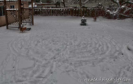 Snow Labyrinth © 2012 Jane Waterman