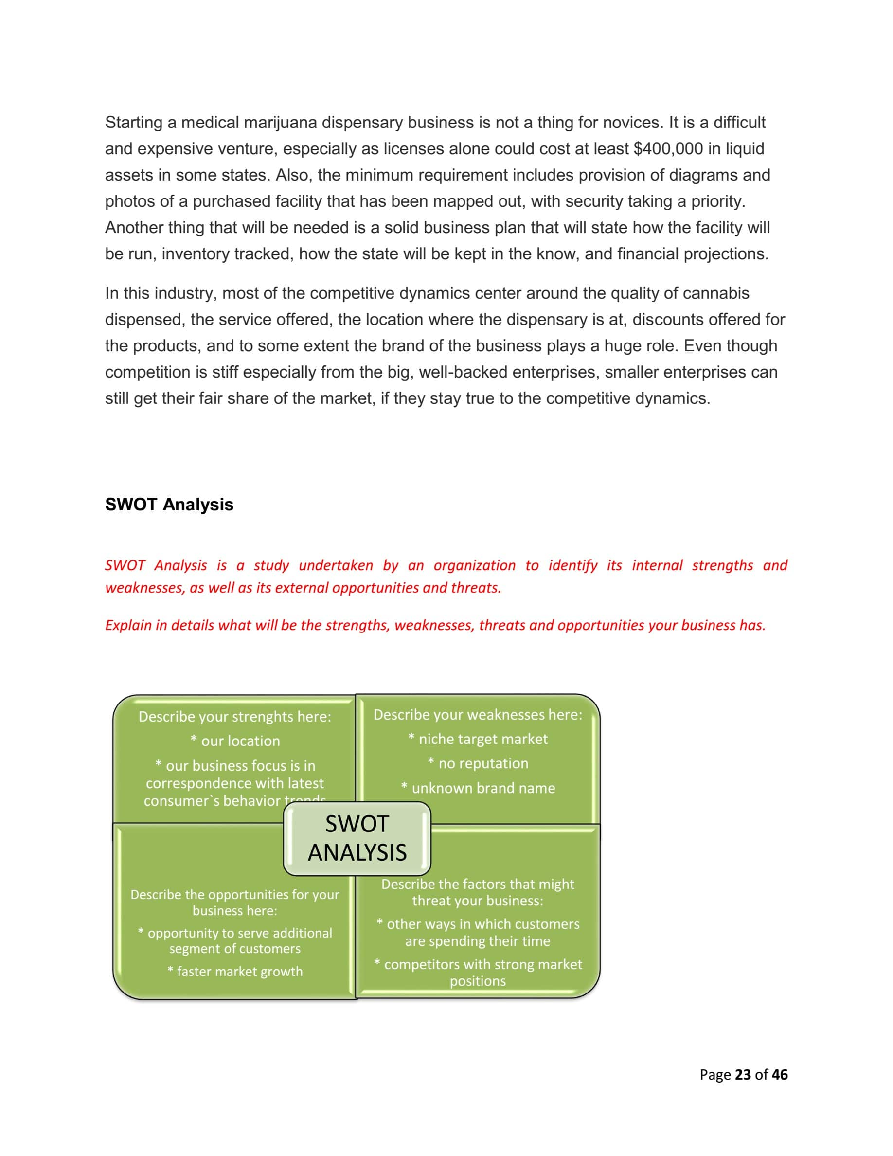 Medical Business Plan Template Sample Pages