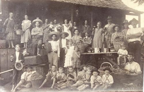 Italian immigration in Rio Grande do Sul