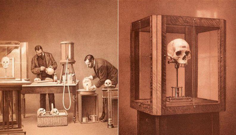 pesquisa-eugenia-esqueletos-0617-1400x800