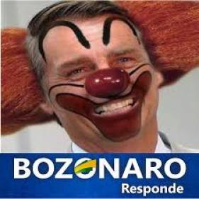 bozonaro