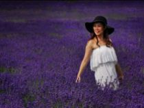 Girl in the Lavender