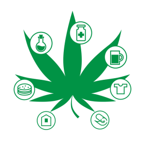 How to Start a Black Owned Cannabis Business