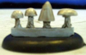 Small mushrooms