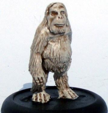 1x female orangutan