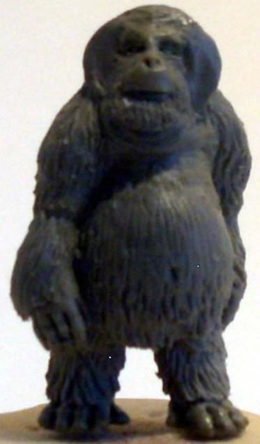 1x male orangutan