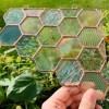 honeycomb staingalss