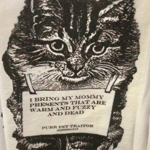 cat presents in your shoe tea towel