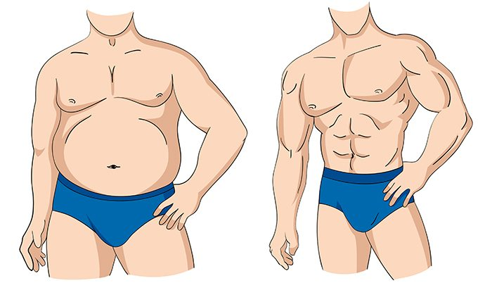 Illustration of a fat and muscular man figure