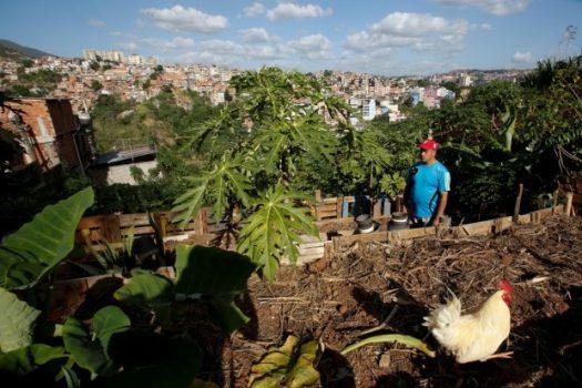 Alirio Ovalles walks at his family's urban garden in Caracas, Venezuela, in June. (Mariana Bazo/Reuters)