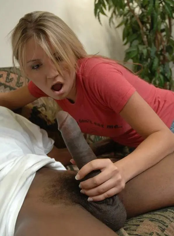 Black Cock Shock – II - image  on https://blackcockcult.com