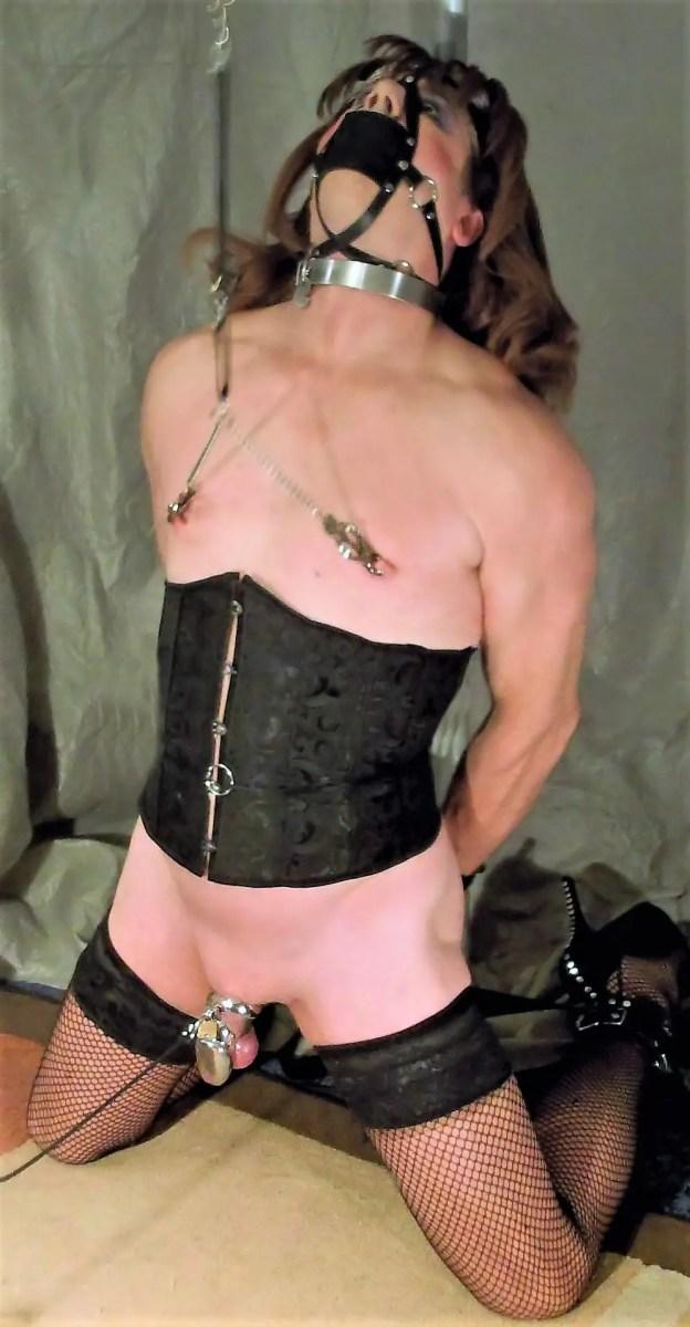 Chastity: The Key to Whiteboi Re-education - image  on https://blackcockcult.com