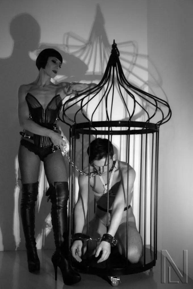 Caged Bois - image  on https://blackcockcult.com