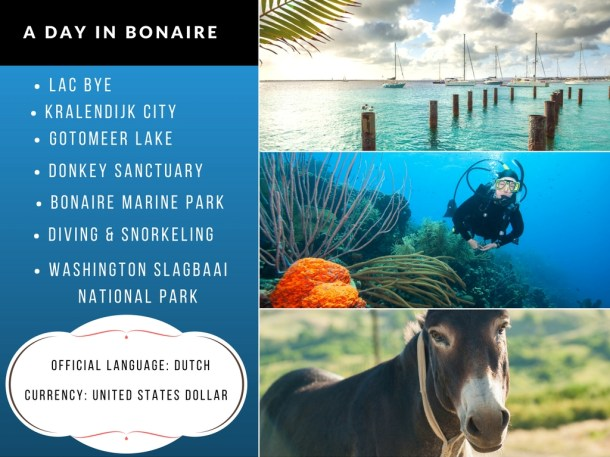 A Day in Bonaire
