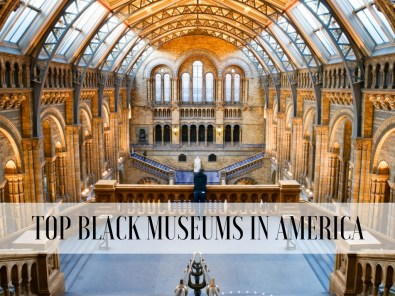 Top Black Museums In America | Black Cruise Travel