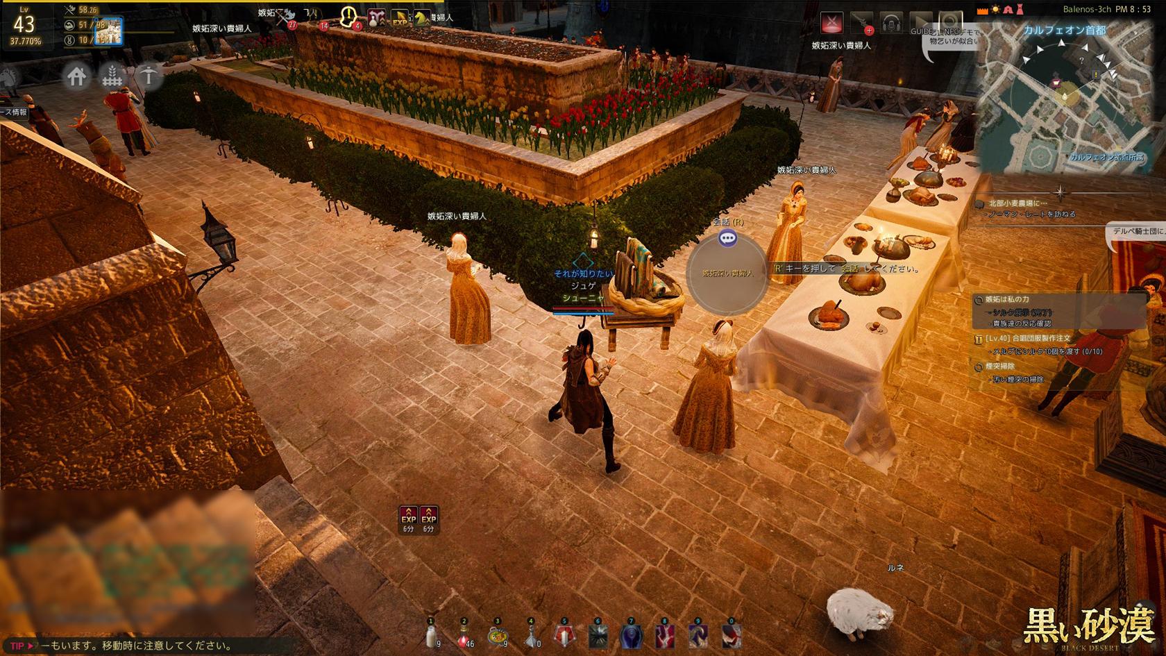 メインストーリー:カルフェオン:社交場、貴族達の戦場