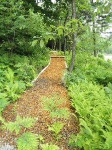 Woodland trail help deerfield Valley