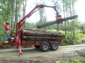 Woodlot management southern vermont