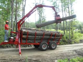 Woodlot management southern vermont