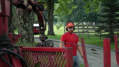 Best tree service company vt