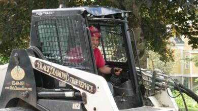 Black Diamond Tree Service
