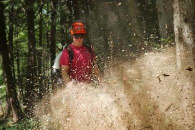 Tree removal and property maintenance company vt