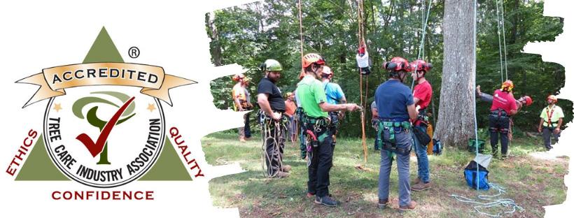 vermont tree care service accreditation