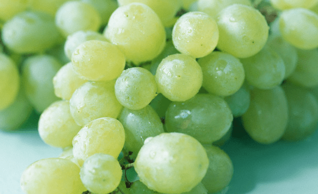 A cluster of green grapes