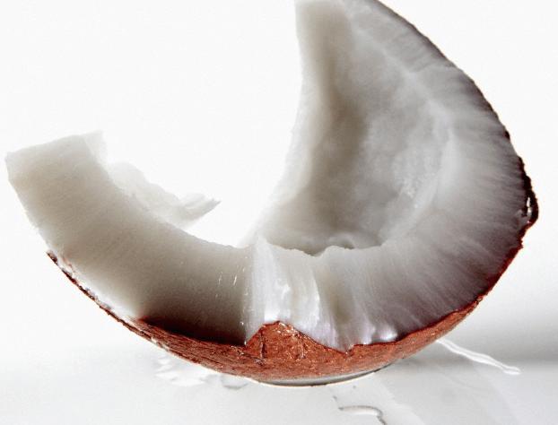 A piece of raw coconut