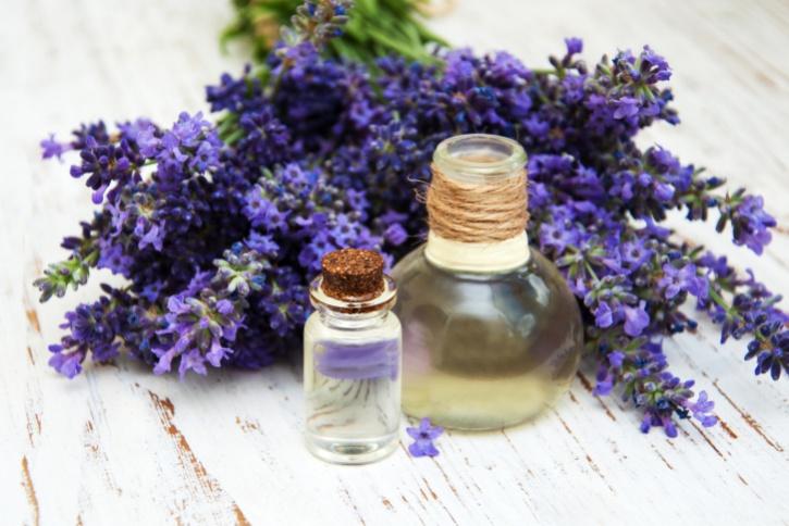 fresh lavender and massage oil