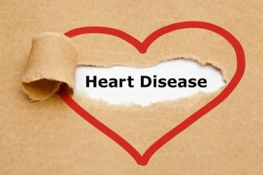 heart disease heart illustration