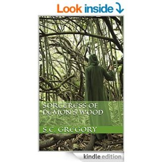 image of new cover for Sorceress of Demon's Wood