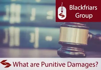 What are punitive damages