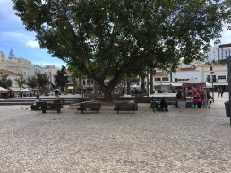 Old-Town-Square
