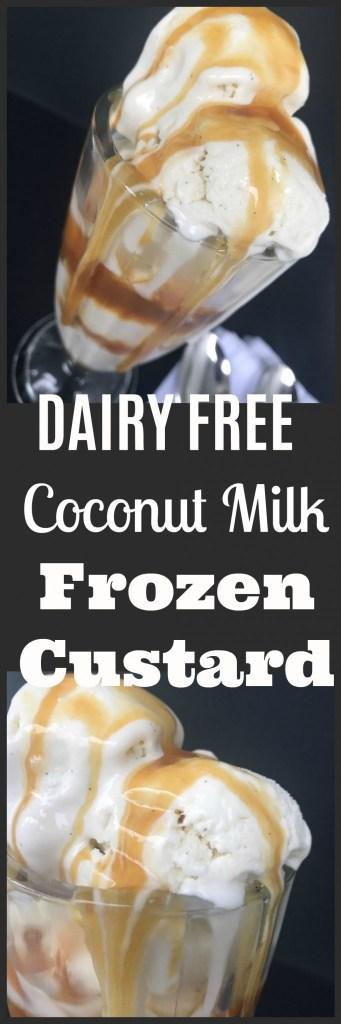 Coconut Milk Frozen Custard Recipe