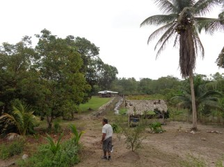 guyana-farm
