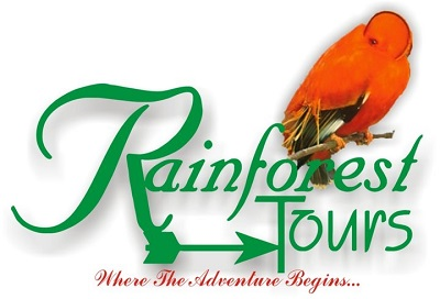 rainforest-tour-icon