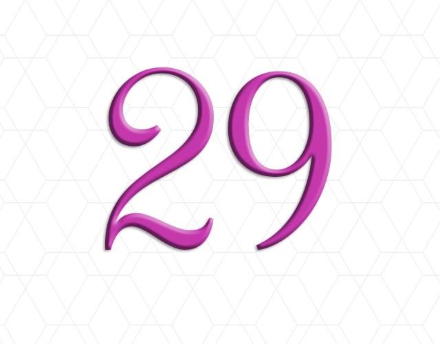 29 Leap Year