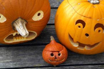 3 Carved Pumpkins