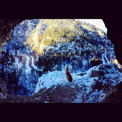 Black Hills Birds eye view