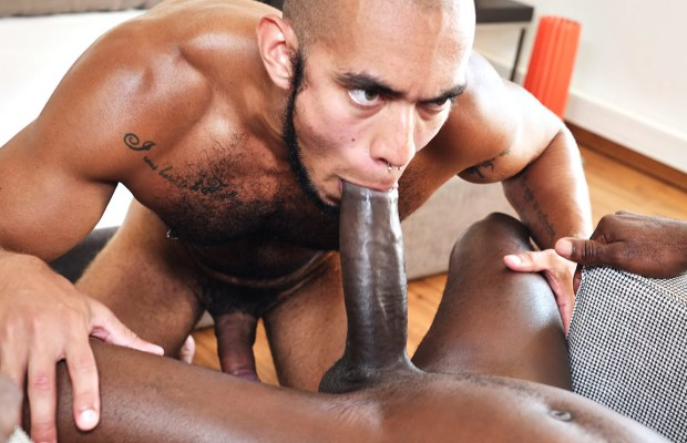Interracial Pleasure