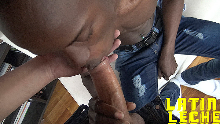 Latin Leche Numero 35 - Boy From Jamaica