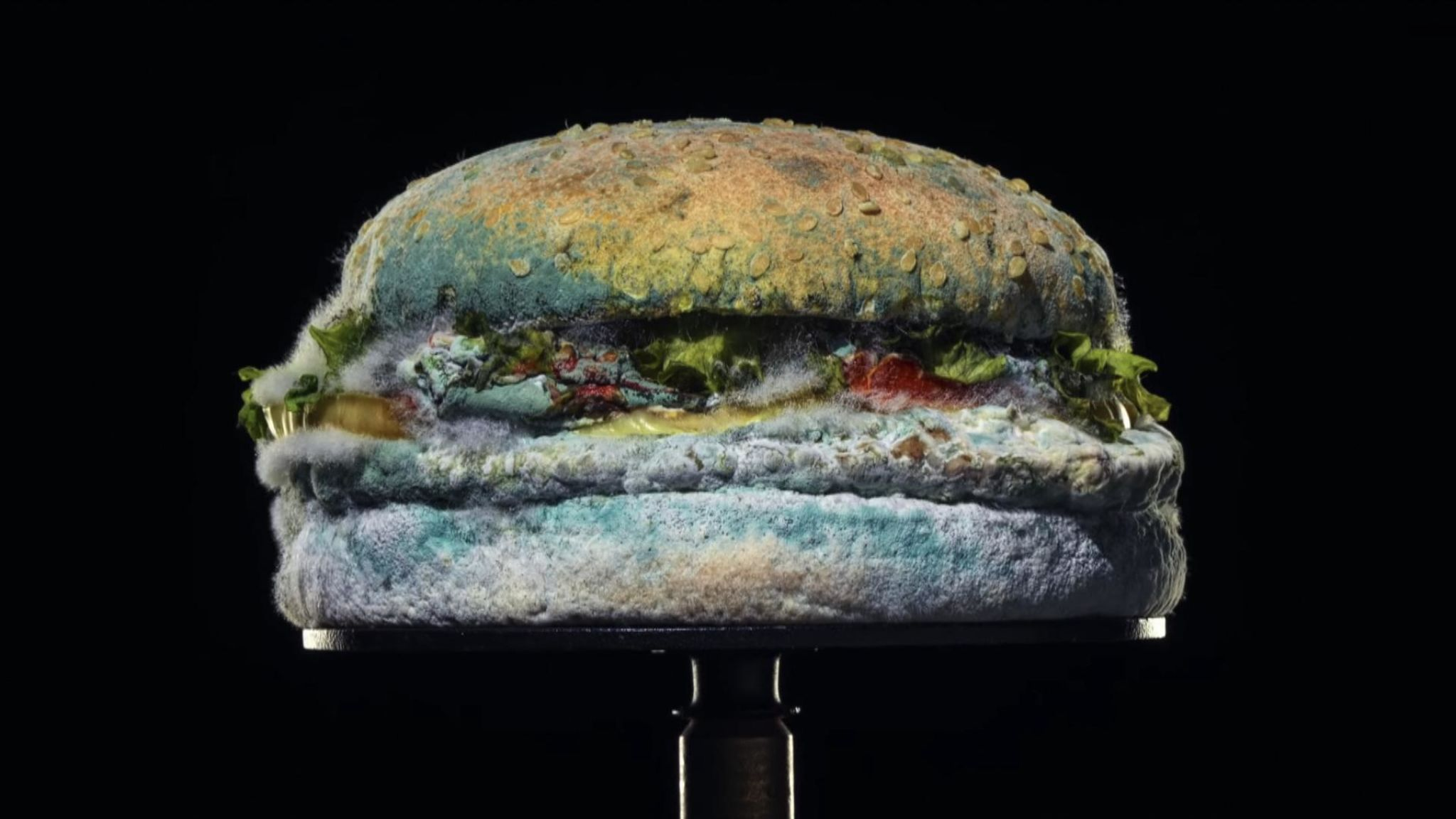 skynews-burger-king-mouldy_4924999