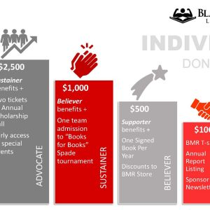 Fundraising Levels Chart - Individual