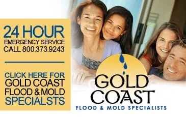 San Diego Mold and Flood Damage