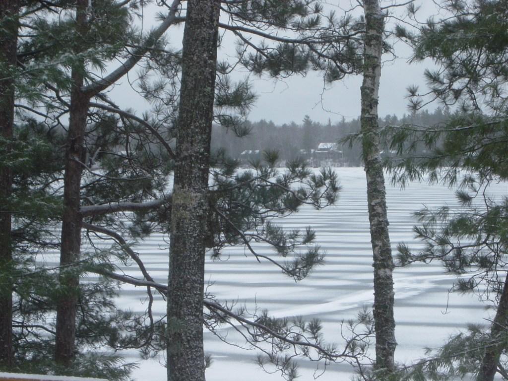 BOL Winter Pic