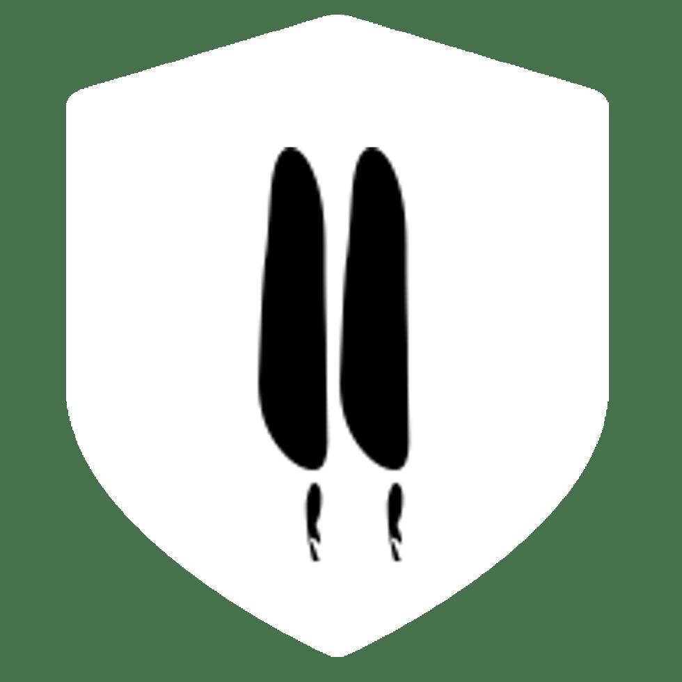 Chapter 11 Logo